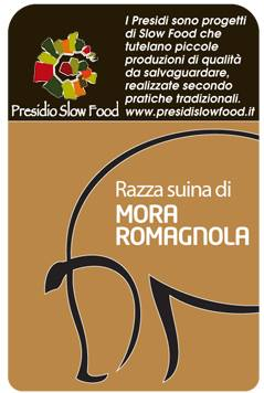 slow food mora romagnola
