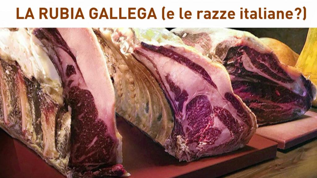 rubia gallega galiziana